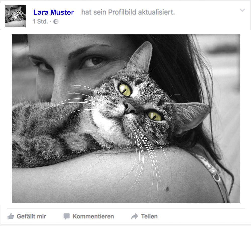 02_Haustier_FB