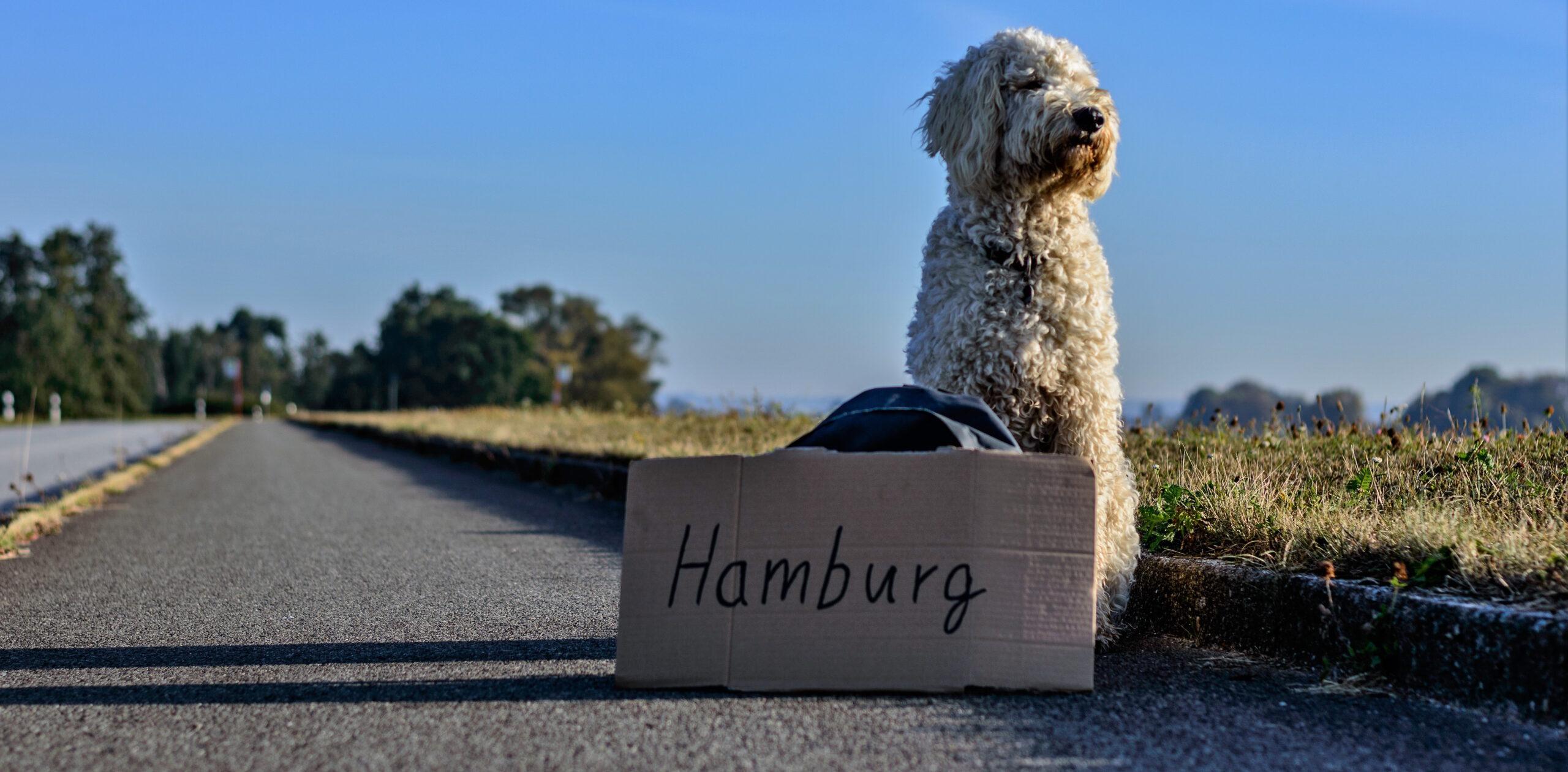 W&N goes Hamburg