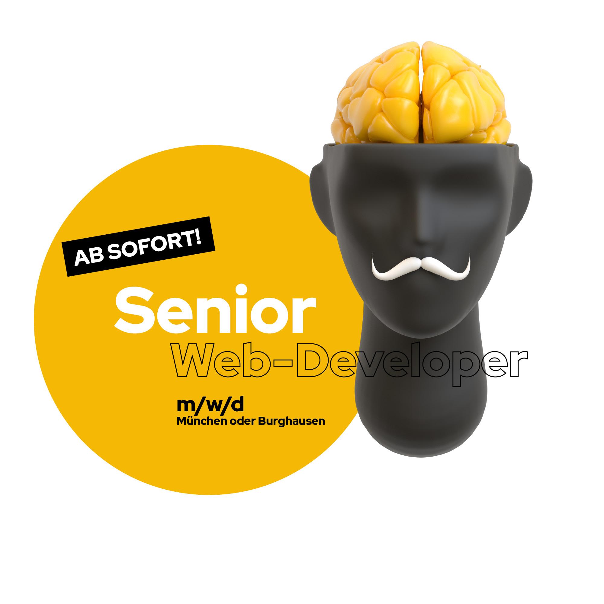 Stellenanzeige Senior Webdeveloper