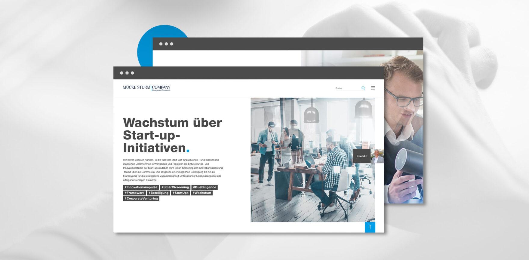 Muecke Sturm Webseite