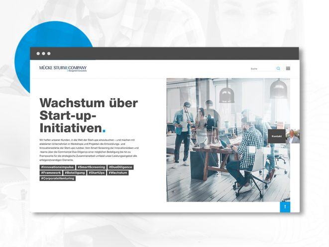 Mücke Sturm Webseite